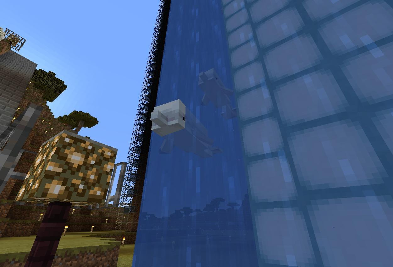 水槽の壁はコマンドで!お魚入れてみた